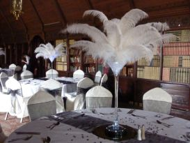 martini feathers ettington