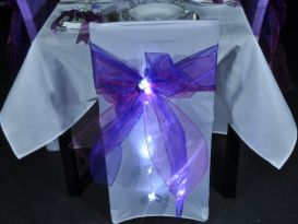 ribbon lites on chairs
