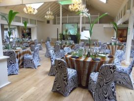safari chair covers