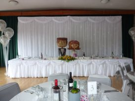 starlight backdrop and table skirt