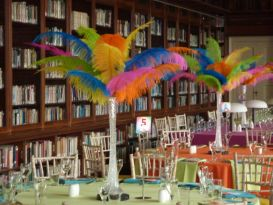 stowe school feathers