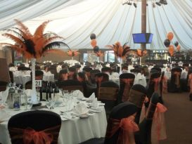 worcestershire ambassadors halloween ball
